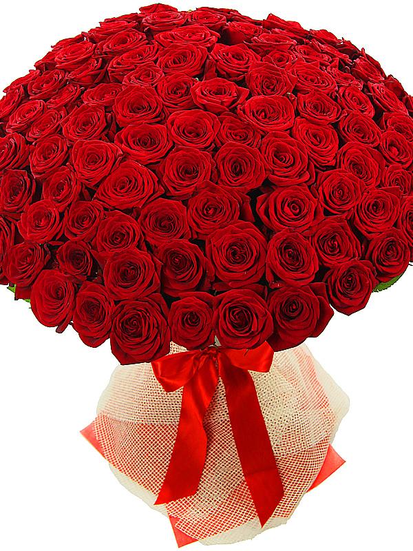 картинка большого букета красных роз монетницей